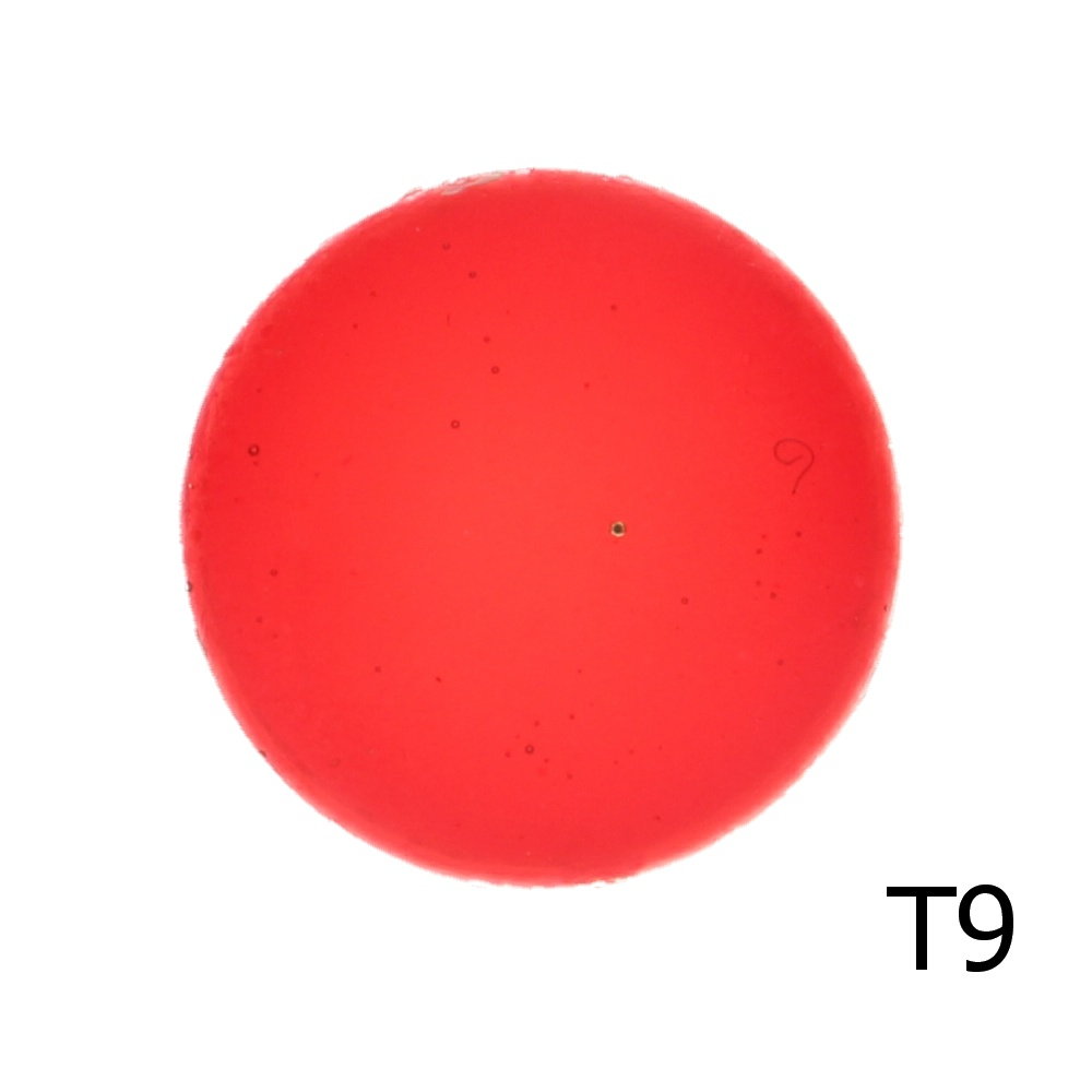 Эмаль прозрачная Т9, 100 гр.